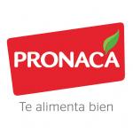 logo pronaca con slogan